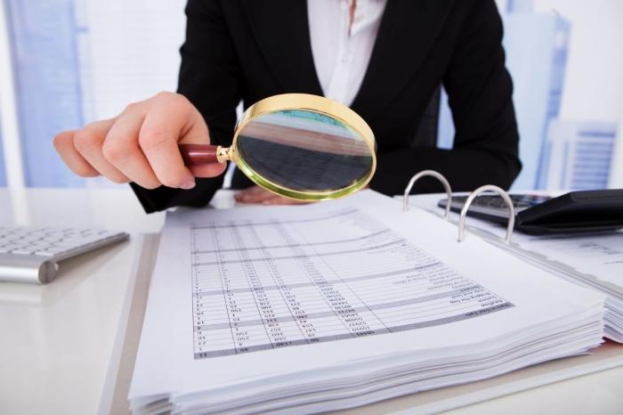 справка о проведенной выездной налоговой проверке образец