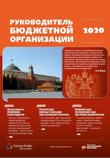 Руководитель бюджетной организации №2 2020